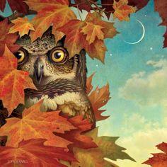 darksilenceinsuburbia:  Dan Craig. Owl.