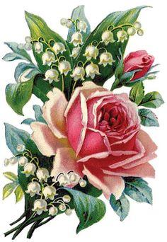"20mm 16 Sweet Pink Dot Rose Roses Flower 3//4/"" Waterslide Ceramic Decals Bx"