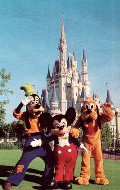 Cinderella Castle - Walt Disney World