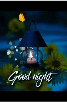 In today's post, we have brought you beautiful good night love images. If you love someone, and are looking for beautiful good night images for them. Good Night Qoutes, Good Night Love Messages, Lovely Good Night, Good Night Flowers, Beautiful Good Night Images, Romantic Good Night, Good Night Friends, Good Night Greetings, Good Night Gif