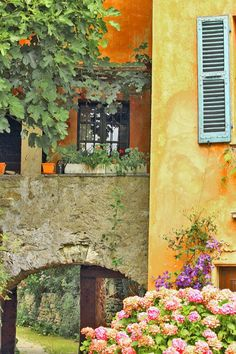 The charm of Provence... | Traveling Colors   ᘡղbᘠ