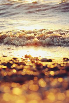 Find images and videos about summer, nature and beach on We Heart It - the app to get lost in what you love. Douglas Adams, Beautiful World, Beautiful Day, I Need Vitamin Sea, Summer Memories, Water Waves, Beach Waves, Planet Earth, Bokeh