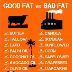 Good Fat vs Bad Fat Infographic