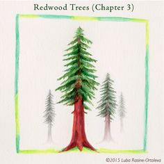 I'm from California and my favorite tree is the Redwood. My grandpa was Grandpa Redwood because he took care of them. I miss him. - Max
