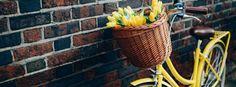 bicicleta con tulipanes.jpg (728×269)