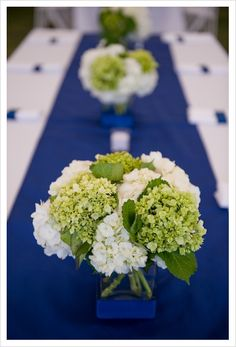 Really love the contrast of the blue w/ the green hydrangeas