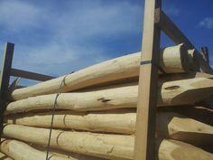 csiszolt akác oszlop Belgium, Pergola, Texture, Wood, Crafts, Surface Finish, Manualidades, Woodwind Instrument, Outdoor Pergola