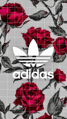 wallpaper iphone frases The post appeared first on Tapeten ideen. Tumblr Wallpaper, Vintage Wallpaper Iphone, Adidas Iphone Wallpaper, Beste Iphone Wallpaper, Trendy Wallpaper, Aesthetic Iphone Wallpaper, Cute Wallpapers, Aesthetic Wallpapers, Emoji Wallpaper