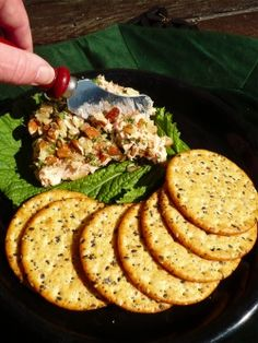 SALMON DIP with canned salmon
