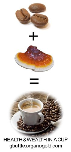 For thousands of years, Ganoderma lucidum has been recognized by practitioners of traditional Asian medicine as the highest ranked of all herbs found in the Chinese pharmacopoeia. I Love Coffee, Coffee Latte, Coffee Menu, Coffee Tables, Health Eating, Hot Chocolate, Health And Wellness, Ethnic Recipes, Gourmet
