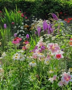 The Hope Blooms Garden at Evergreen Health Services