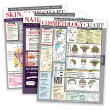 Cosmetology Charts  Students & Educators 3-Pack Bundle