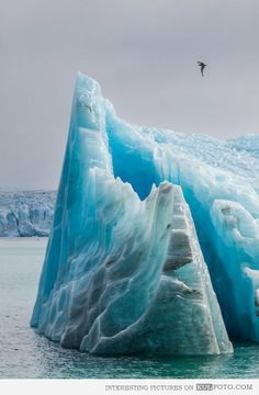 Glacier icebergs in Svalbard, Norway.