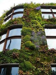 """jardim suspenso e para os fracos, os fortes """"enjardinam"""" o prédio todo"""