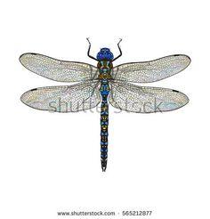 Art Nouveau Dragonfly Fairies