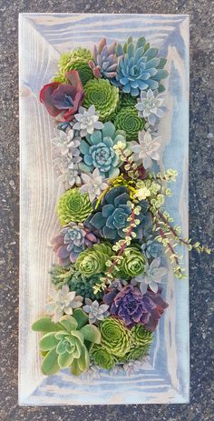28 x 12 Framed Succulent Vertical by SucculentWonderland on Etsy