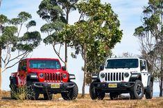 Jeep Gladiator and Jeep Rubicon Chrysler Dodge Jeep, Jeep Rubicon, Jeep Gladiator, Used Cars, Dream Cars, Monster Trucks