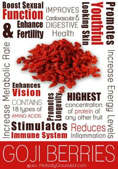 Health Benefits of Goji Berries...high in antioxidants  protein, boosts fertility and libido, increases energy and promotes longevity!
