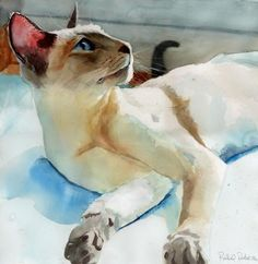 Siamese Cat Art Print of my watercolor painting Siamese in Peacock Shadows by Rachael Parker.