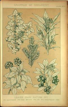 (1856) - The Grammar of Ornament, by Owen Jones.  via the Smithsonian
