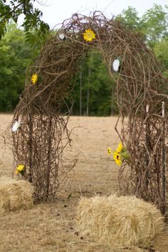 Rustic Wedding  Arch made out of grape vine.