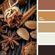 Color inspiration in spicy colors. Photo from: In Color Balance Bedroom Colour Schemes Warm, Warm Colour Palette, Bedroom Colors, Warm Colors, Natural Colors, Brown Color Schemes, Palette Design, Boutique Deco, Color Balance