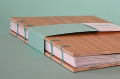 Lovely use of twisted metal to bind the portfolio together. Produces a very tactile object.