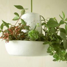 hanglamp 'plant en lamp nr2'