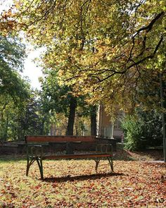 Jesienny klimat na Steinhof przy szpitalu Baumgartner Hoehe. Piękna okolica.  #österreich #austria #Vienna #Wien #wiedeń #igersaustria #igersvienna #igerswien #visitvienna #visitaustria #viennablogger #ilovewien #viennacity #viennaaustria #vienna_austra #baumgartnerhoehe #ławeczka Visit Austria, Vienna Austria, Outdoor Furniture, Outdoor Decor, Park, City, Home Decor, Decoration Home, Room Decor