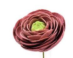 Image result for photo of a ranunculus flower gumpaste