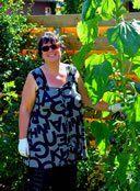 85 Winterharte immergrüne Pflanzen - Liste und Übersicht Gardening, Banana Plant Care, Climbing Vines, Garden Plants, Indoor House Plants, Projects, Lawn And Garden, Horticulture
