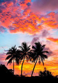 Photography of the Island of Saipan