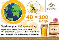 #honey https://www.facebook.com/dommeda.ru