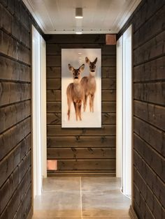 office decor Dark walls and bright moldings Vyrk Valdres # cabin interior Dark walls and lights Modern Cabin Interior, Chalet Interior, Cottage Design, House Design, Mountain Decor, Lake Cabins, Dark Walls, Cottage Interiors, Deco Design