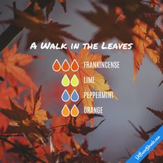 A Walk in the Leaves - Essential Oil Diffuser Blend