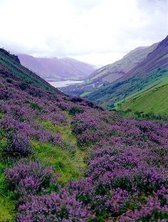 Scottish Highlands.  Oh that's beautiful.... and it really is like that im very luck to live here