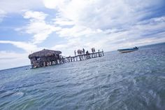 Island Routes Pelican Bar Highlight Catamaran Cruise