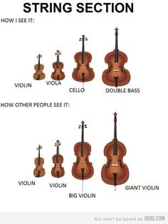 """HAHA! This is funny, because I was just talking to somebody who called the double bass """"one of those REALLY REALLY huge violins."""""""