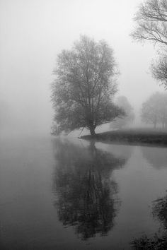HaseundFlo: Morgenspaziergang am Fluss