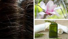 6 tinte naturali per coprire i capelli bianchi