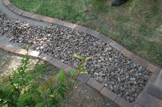 Brick framed rock path for drainage from downspout. The flat brick is easy to mow over.