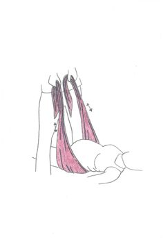 Lohee Rebozo | Perfect Birth Tool for Doulas and Mothers