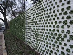 Green Fence!