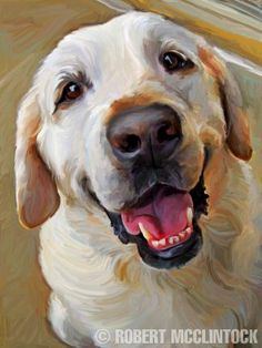 """When Do We Eat?"" - Yellow Lab - Robert McClintock"
