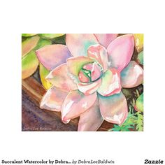 Succulent Watercolor by Debra Lee Baldwin Canvas Print