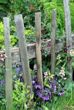 rustic fence in potager by janet.granum