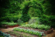 Vegetable garden, watter fence, arched gate