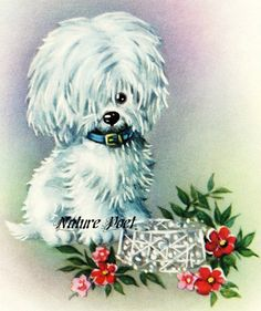 White Shaggy Dog Downloadable Printable Digital Art by naturepoet
