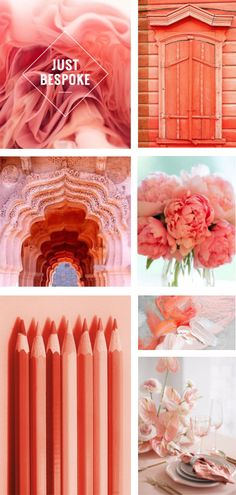 Living Coral Pantone Colour of The Year 2019 Inspiration. Coral Colour Palette, Pantone Colour Palettes, Coral Color, Colour Schemes, Pantone Color, Color Trends, Color Combinations, Yoga Studio Design, Pinterest Trends