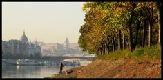 The green heart of Budapest, Margareth Island Walkway, Hungary, Taj Mahal, Country Roads, Earth, River, World, Pictures, Photos